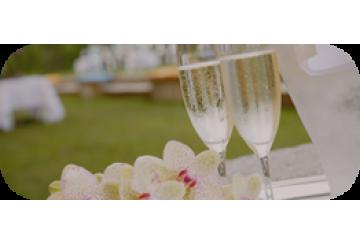 Оформление свадеб Шампанское в  подарок